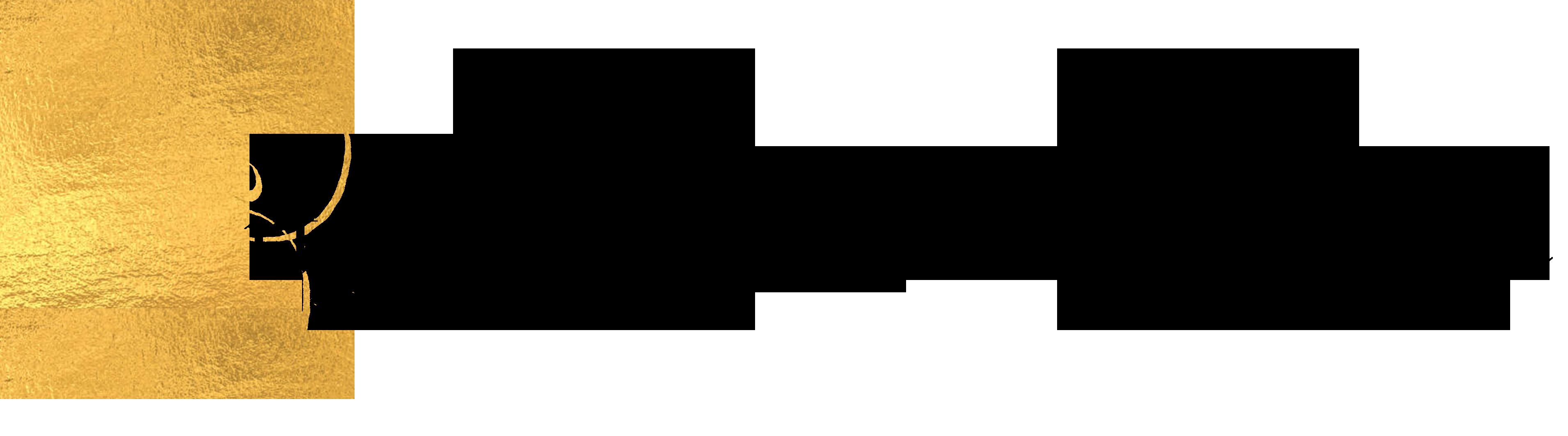 Crteži Fischera von Erlacha